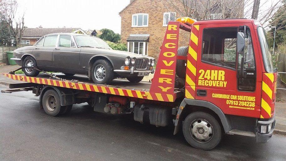 Jaguar Recovery